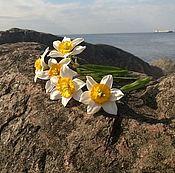 Цветы и флористика ручной работы. Ярмарка Мастеров - ручная работа Нарциссы (холодный фарфор). Handmade.