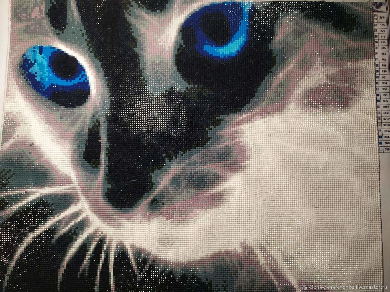 Кот с голубыми глазами, Картины, Егорьевск,  Фото №1