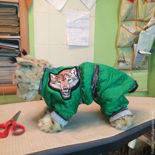 Одежда для собак, ручной работы. Ярмарка Мастеров - ручная работа. Купить Комбинезон утепленный для йоркширского терьера. Handmade. Комбинезон для собак