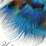 Материалы для творчества ручной работы. Ярмарка Мастеров - ручная работа См. описание! Перо павлина натуральное, неокрашенное №22 (2).. Handmade.