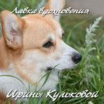 Лавка Вдохновения Ирины Кульковой - Ярмарка Мастеров - ручная работа, handmade