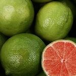 Red lime (sokrovishnica) - Ярмарка Мастеров - ручная работа, handmade