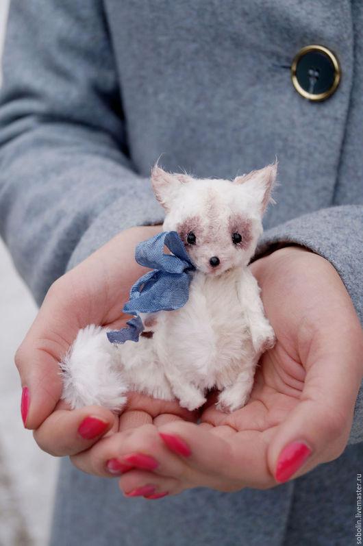 """Мишки Тедди ручной работы. Ярмарка Мастеров - ручная работа. Купить """"Cute friends""""  beige cat - Беж. Handmade. Комбинированный"""