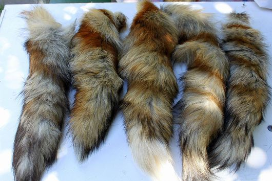 Шитье ручной работы. Ярмарка Мастеров - ручная работа. Купить Хвосты лисы. Handmade. Хвост, меховой лоскут