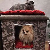 Для домашних животных, handmade. Livemaster - original item House for dogs and cats. Order in size, in the desired color. Handmade.