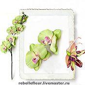 Украшения ручной работы. Ярмарка Мастеров - ручная работа Заколка-защип Тропическая орхидея. Handmade.