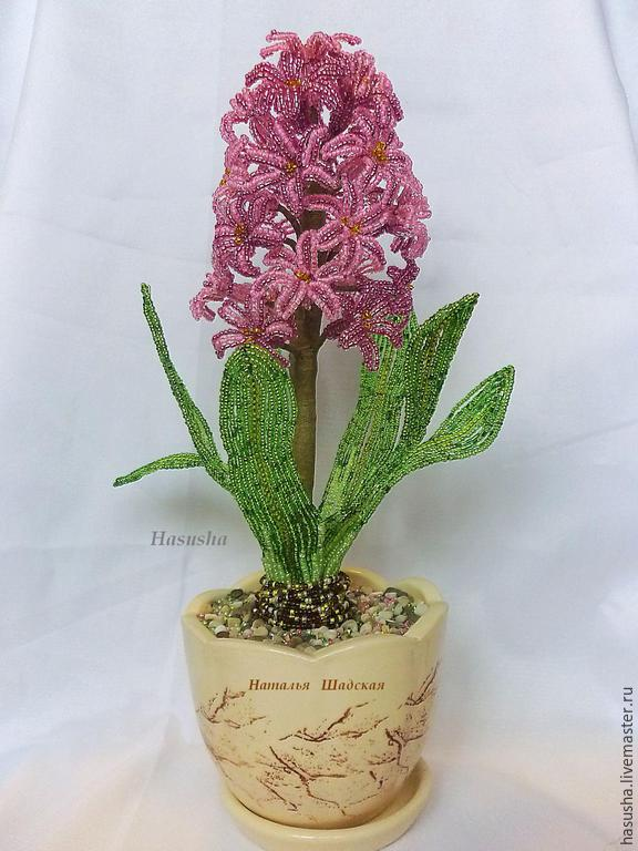 Гиацинт цветы купить в москве комнатные цветы купить в пензе
