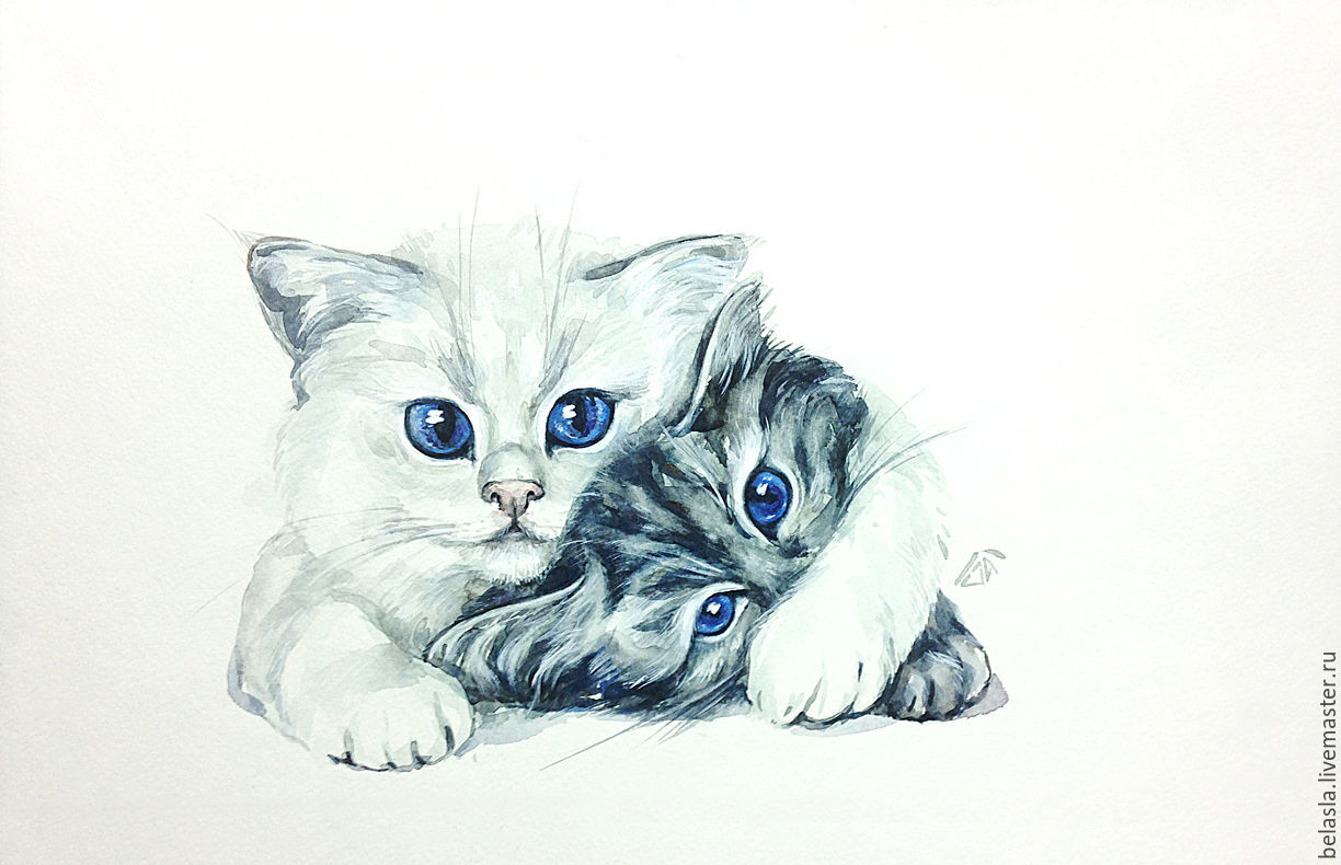 watercolor painting cats, White and gray, Pictures, Moscow,  Фото №1