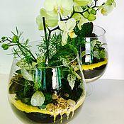 """Цветы и флористика ручной работы. Ярмарка Мастеров - ручная работа Флорариум """"Орхидея лайм. Handmade."""