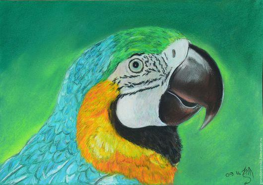 Животные ручной работы. Ярмарка Мастеров - ручная работа. Купить Большой ара (пастель, попугай, картины не дорого). Handmade. Зеленый