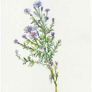"""Картины и панно ручной работы. Ярмарка Мастеров - ручная работа Картины: Акварель """"Сентябринка""""  цветок для души. Handmade."""