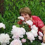 Светлана Панфилова(Кармазинова) (svetlanapan) - Ярмарка Мастеров - ручная работа, handmade