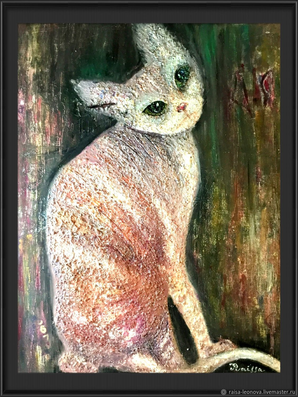 Cat, Pictures, Sopot,  Фото №1