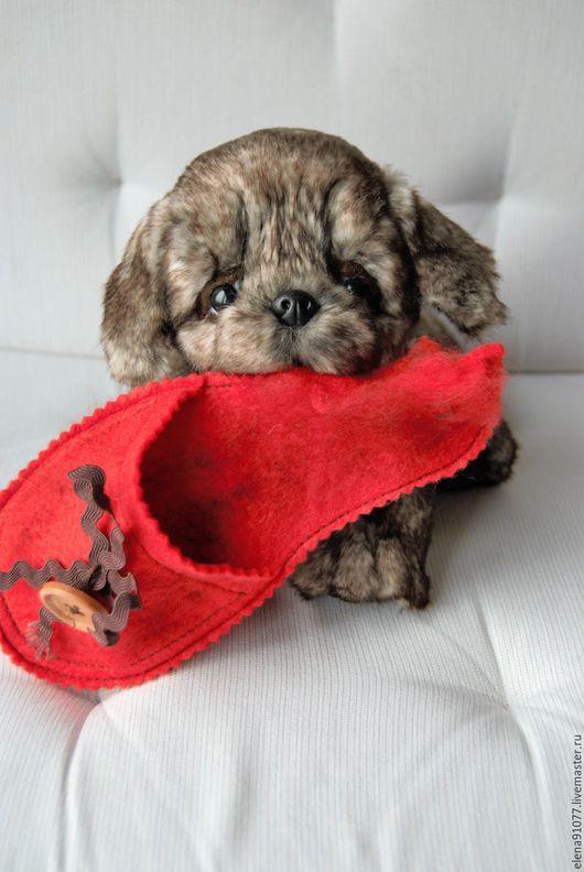 Мишки Тедди ручной работы. Ярмарка Мастеров - ручная работа. Купить щенок тедди. Handmade. Тедди щенок, собачка