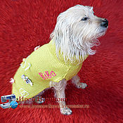 Для домашних животных, handmade. Livemaster - original item Sweater for a beloved pet. Handmade.