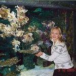 Лида Гурмак (lidagia) - Ярмарка Мастеров - ручная работа, handmade