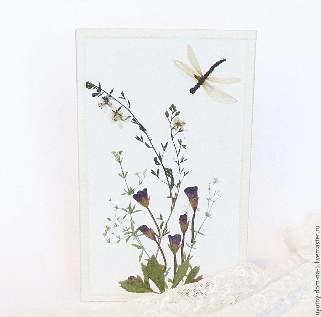 Бабочки стрекозы: картинки и фото стрекозы и цветы, скачать 49