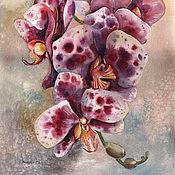 Акварели с орхидеями, серия из 4 работ