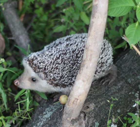 hedgehog 'Epic', Toys, Moscow, Фото №1