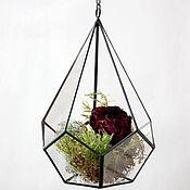 Цветы и флористика handmade. Livemaster - original item Florarium. Geométrico colgante florarium en la cadena de. La gota. Handmade.