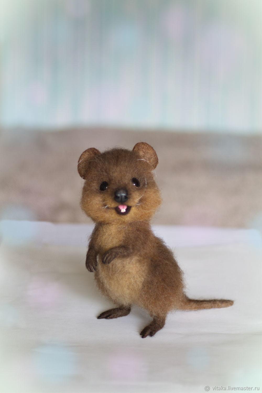 Квокка. Австралийский квокка - улыбчивый подарок, Игрушки, Санкт-Петербург, Фото №1