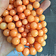 Для украшений ручной работы. Агат Морковный светло-оранжевый бусины 10мм, 12мм Огранка. Юлия «FonKulon». Интернет-магазин Ярмарка Мастеров.