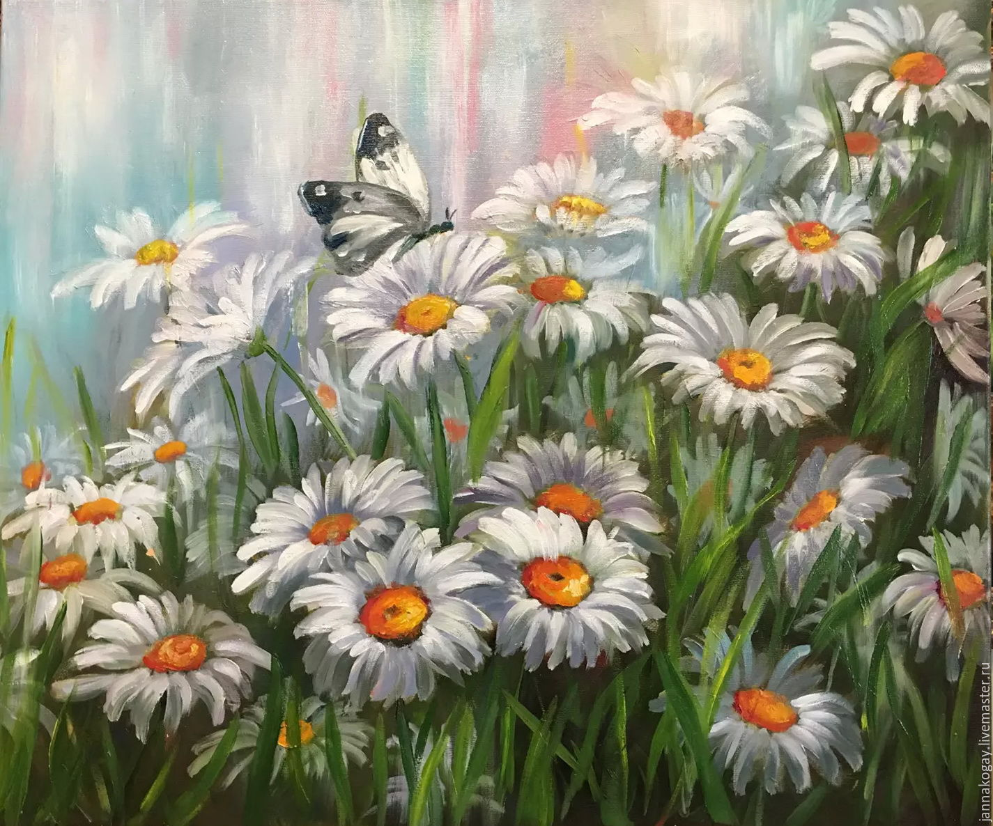 Daisies and butterfly, Pictures, Moscow,  Фото №1