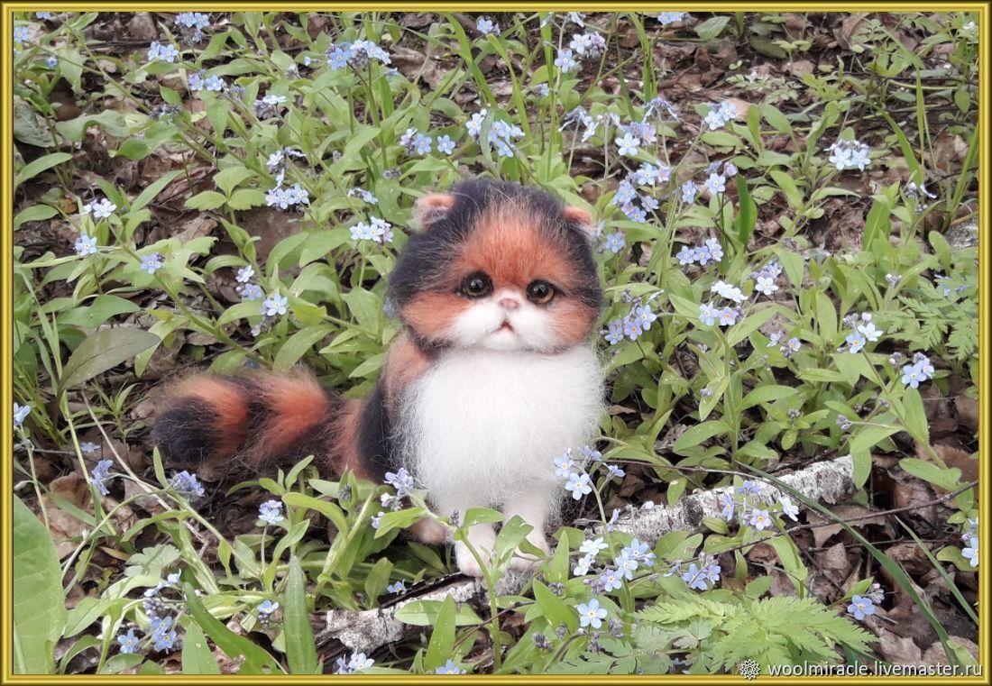 Котенок ПУШИНКА, Войлочная игрушка, Орск,  Фото №1