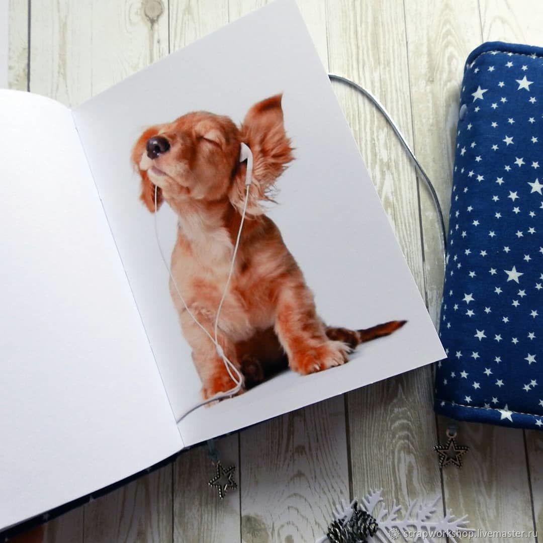 Картинки блокнотов с щенками