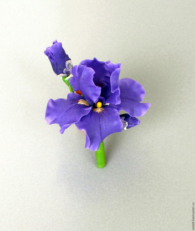 ирис,ирис брошь,ирис натуралистичный,ирис из полимерной глины. Цветы и украшения Зарифы Пироговой.
