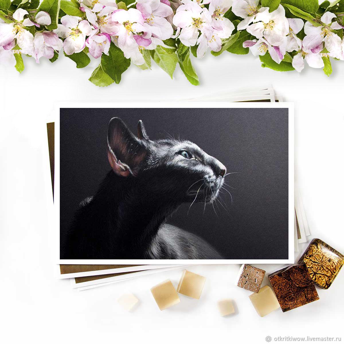 Открытка Чёрный кот Наслаждение, Открытки, Йошкар-Ола,  Фото №1