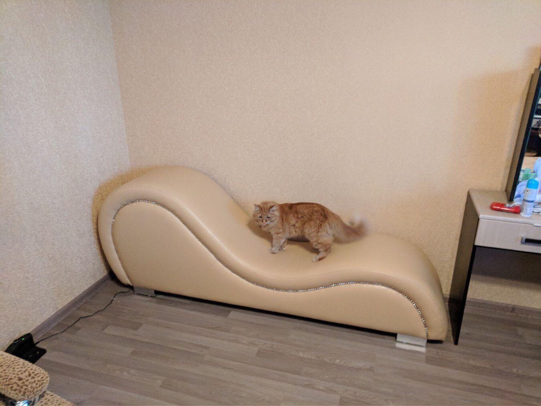 Tantra sofa chair sex wave in vandal proof eco leather, Sofas, Krasnodar,  Фото №1