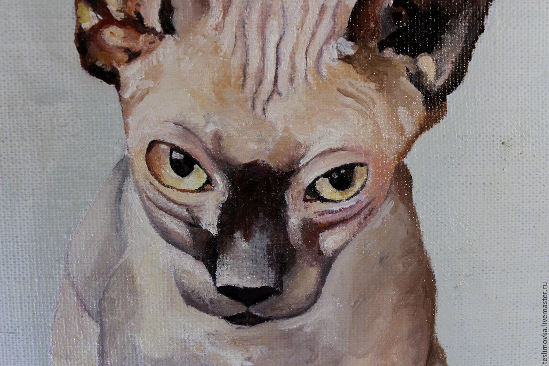 Oil painting sphynx, cat  kitten, animal