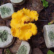 """Косметика ручной работы. Ярмарка Мастеров - ручная работа Мыло """"Солёные грибки"""". Handmade."""