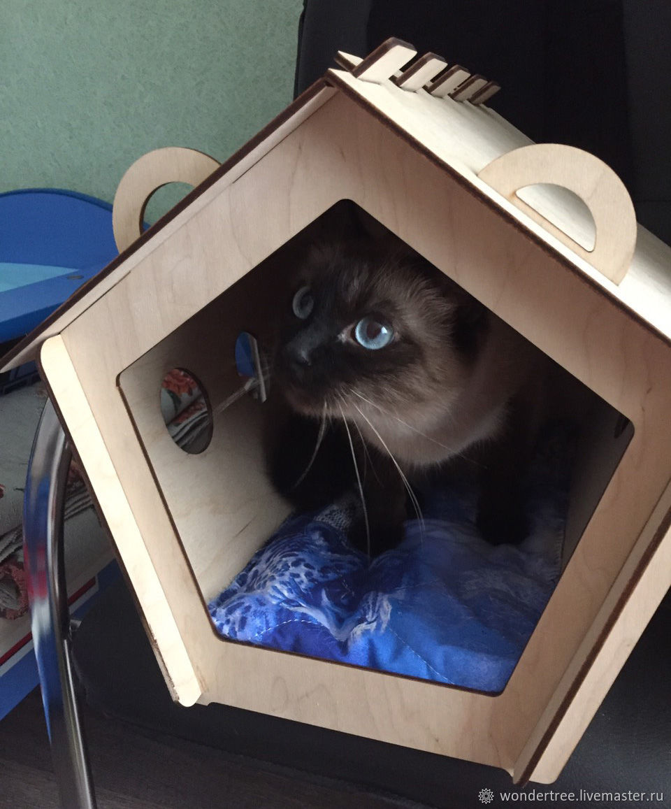 House for cats, Pet House, Chelyabinsk,  Фото №1