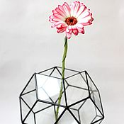 Цветы и флористика handmade. Livemaster - original item The Floriana for plants Star Balloon. Geometric vase for Floriana. Handmade.