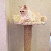 Для домашних животных, ручной работы. Ярмарка Мастеров - ручная работа Когтеточка с лежанкой Цветок - подходит крупным кошкам. Купить. Handmade.