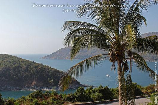 Пальма, море, пляж, вид на море и горы, купить фотокартину