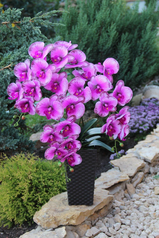 Композиция для интерьера орхидея из латекса, Композиции, Мичуринск, Фото №1