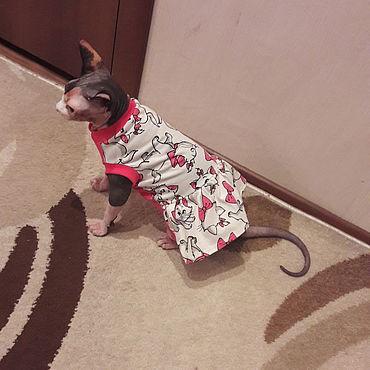 """Товары для питомцев ручной работы. Ярмарка Мастеров - ручная работа Одежда для кошек  майка-платье """"Красотка"""". Handmade."""