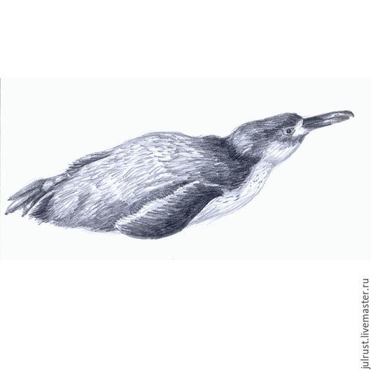 Животные ручной работы. Ярмарка Мастеров - ручная работа. Купить Картина Пингвин отдыхает, рисунок карандашом графика серый белый. Handmade.