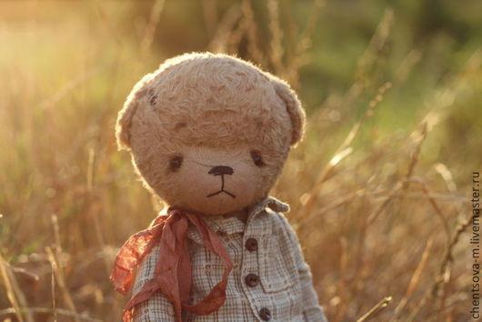 Мишки Тедди ручной работы. Ярмарка Мастеров - ручная работа. Купить Сева.... Handmade. Мишка, коллекционные медведи, тедди мишка