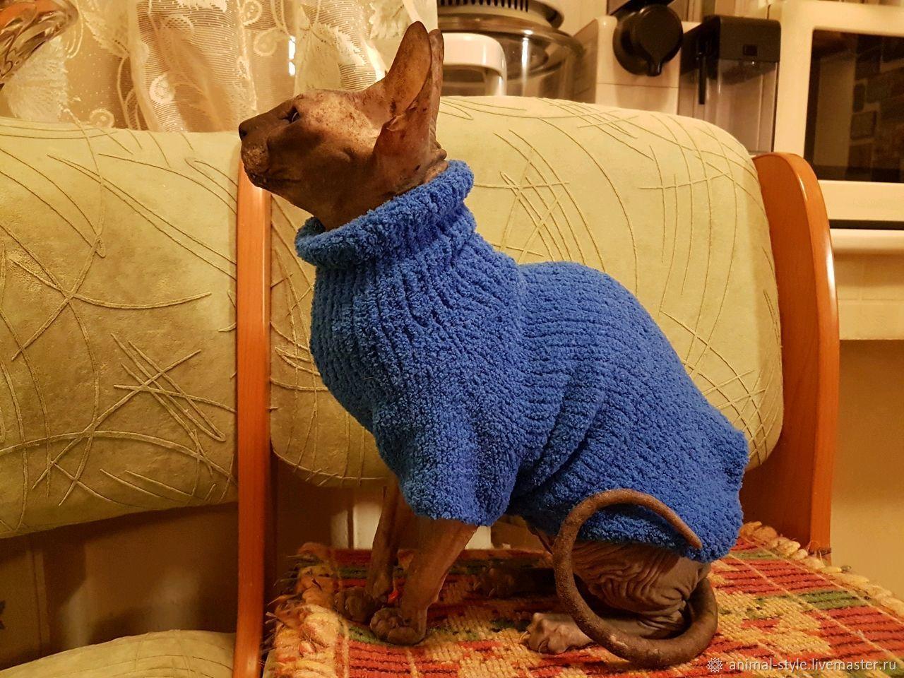 Кофта для кошек, Одежда для питомцев, Санкт-Петербург,  Фото №1
