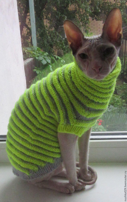 Вязание кофта для кошки 25