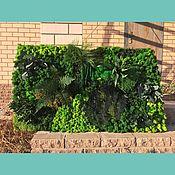 Картины ручной работы. Ярмарка Мастеров - ручная работа Фитокартина из стабилизированных мхов и растений. Handmade.