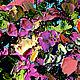 """Пейзаж ручной работы. """"Цветочный Бриз"""" - картина маслом Испания. ЯРКИЕ КАРТИНЫ Наталии Ширяевой. Ярмарка Мастеров. Синий"""