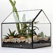 Цветы и флористика handmade. Livemaster - original item The Floriana. Geometric Floriana House with succulents. Handmade.