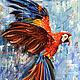 Открытка Красный попугай, Открытки, Чита, Фото №1