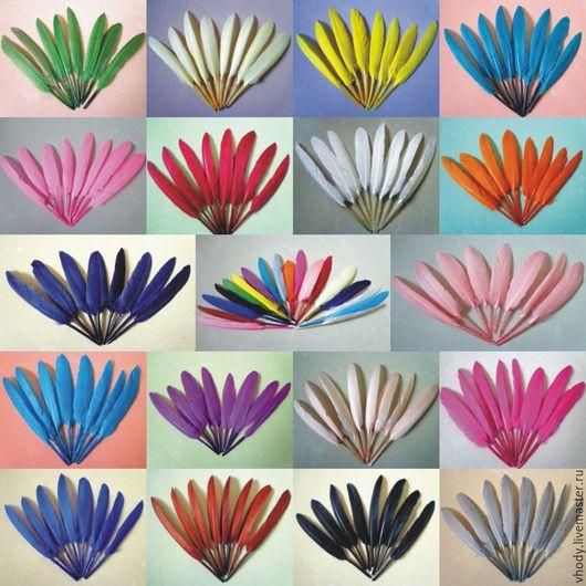 Другие виды рукоделия ручной работы. Ярмарка Мастеров - ручная работа. Купить Перья гусиные. Цветные. Handmade. Перья