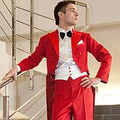 Одежда handmade. Livemaster - original item Tails for performers, ballroom dance. Handmade.